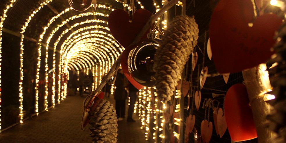 Jul i Zoo